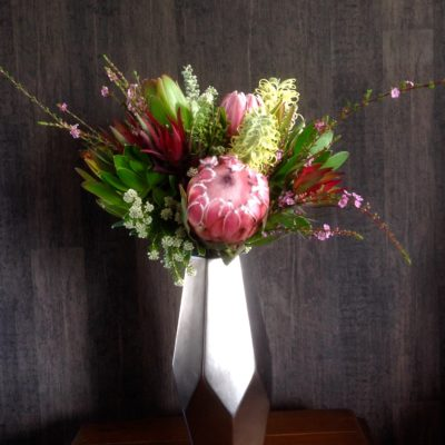 "Proteas with native South African ""fynbos' foliage"