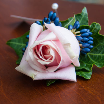 Wedding buttonhole of blush pink rose with navy Viburnum berries and ivy.