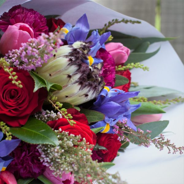 Close up of Blooms of the Week